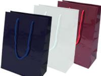 紙袋:タイプ大